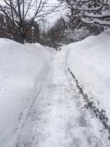 snowbanks2015